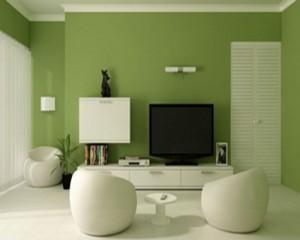 10 Kombinasi Warna Cat Rumah Idaman Anda 5