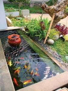 20 Kolam Air Mancur Mini Indah dan Cantik 9
