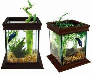 15 Desain Contoh Model Aquarium Minimalis1