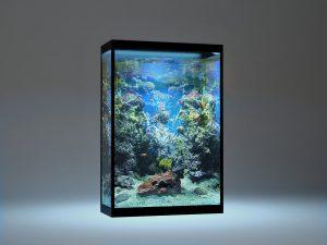 15 Desain Contoh Model Aquarium Minimalis11
