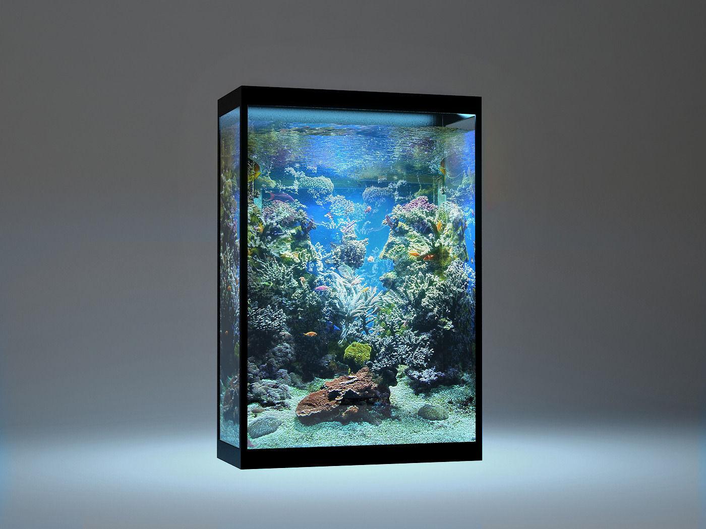 15 Desain Contoh Model Aquarium Minimalis | RUMAH IMPIAN