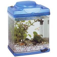 15 Desain Contoh Model Aquarium Minimalis13