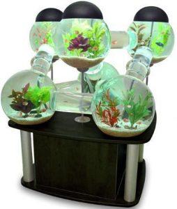 15 Desain Contoh Model Aquarium Minimalis15