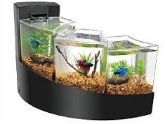 15 Desain Contoh Model Aquarium Minimalis8