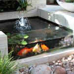 Contoh Desain Kolam Ikan Hias Minimalis