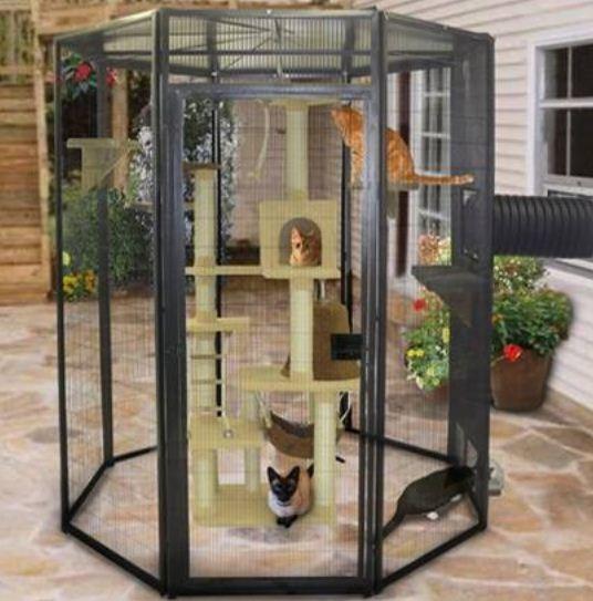 45 Desain Kandang Kucing Modern Tingkat Dan Sederhana Rumah Impian