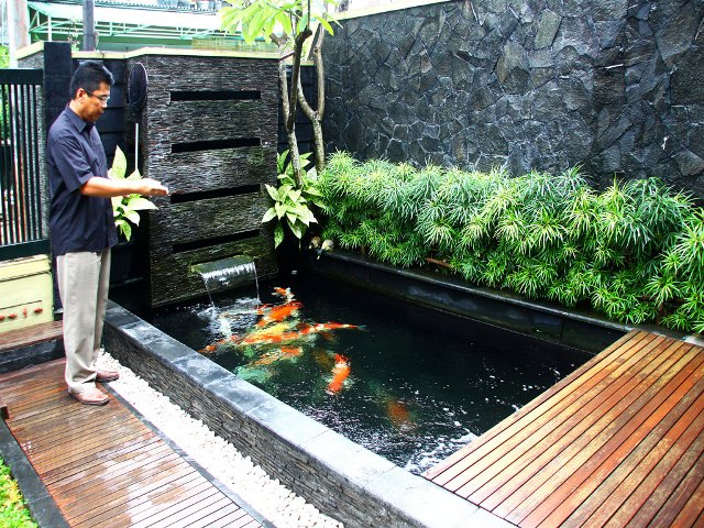 contoh Kolam Ikan Hias Minimalis